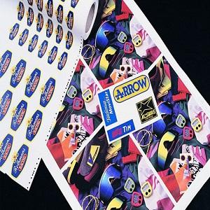 Siser Colorprint